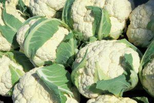 Чем хороша капустная диета