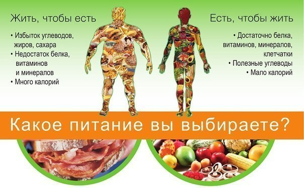 Меню правильного питания на 5 дней