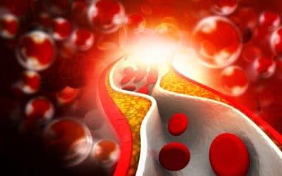 Высокий сахар в крови: как снизить его уровень в домашних условиях