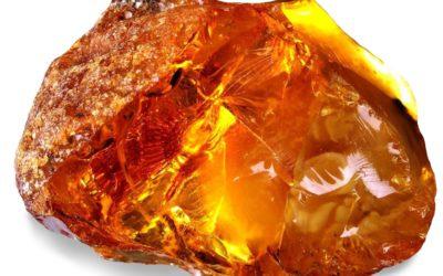 Янтарная кислота: особенности, полезные свойства, возможный вред