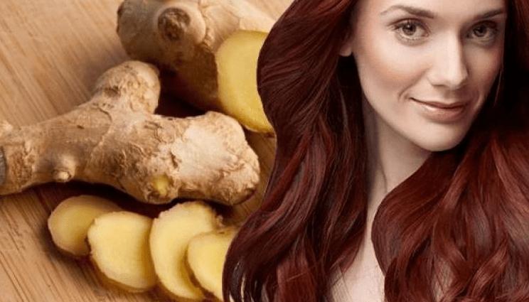 Имбирь в рационе правильного питания, польза для здоровья и красоты