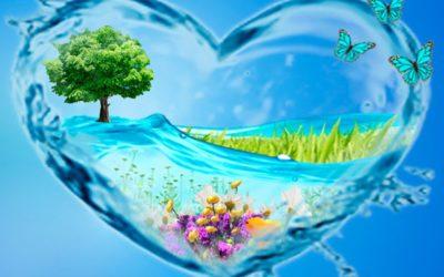 Вода — живительный источник для человека