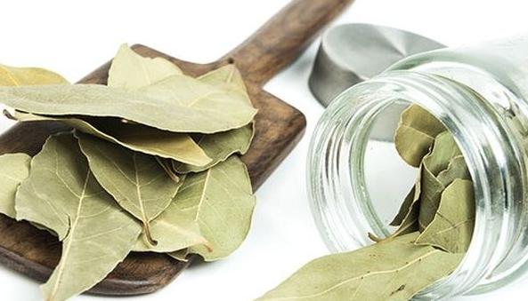 Лавровый лист, рецепты народной медицины для оздоровления организма